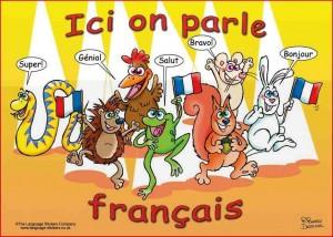 وبلاگ فرانسوی